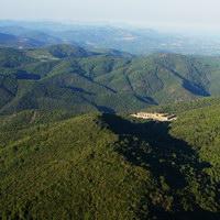 l'écosystème des Maures
